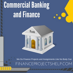 Commercial Banking and Finance Assignment Help