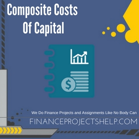 Composite Costs Of Capital Project Help