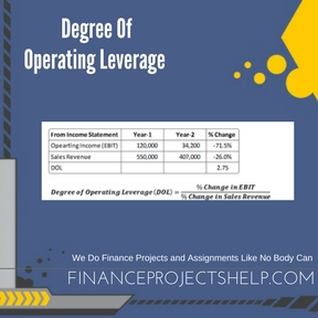 Degree Of Operating Leverage Project Help