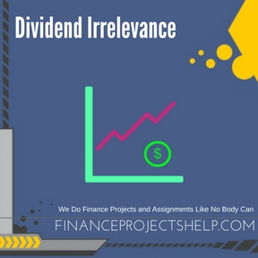 Dividend Irrelevance Project Help