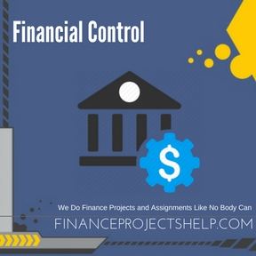 Financial Control Project Help