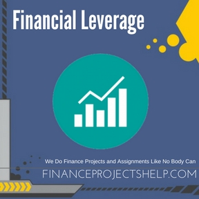 Financial Leverage Project Help
