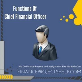Functions Of Chief Financial Officer Project Help