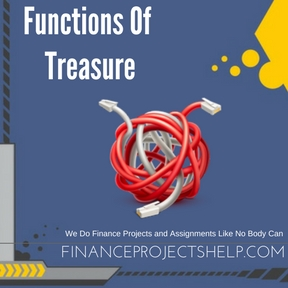 Functions Of Treasure Project Help