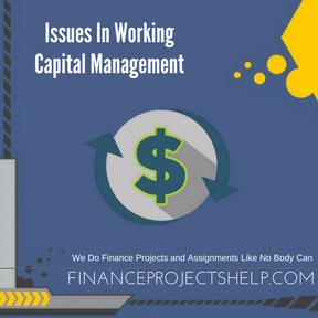 Issues In Working Capital Management Project Help