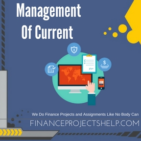 Management Of Current Assets Project Help