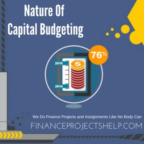 Nature Of Capital Budgeting Project Help