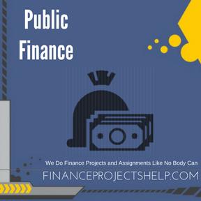 Public Finance Project Help