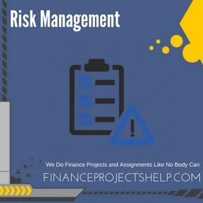 Risk Management Project Help